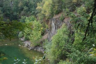 Zwischen herabhängenden Zweigen hindurch blickt man auf einen steilen, stark zugewachsenen Hang. In der Bildmitte ist Gestein aufgeschlossen. Links, am Hangende, steht Wasser.