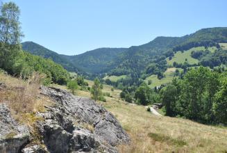 Das Bild zeigt eine nach rechts und zum Hintergrund hin abfallende ausgebleichte Wiese mit markanten Felsen im linken Vordergrund. Hinten steigen grüne und bewaldete Berghänge empor.