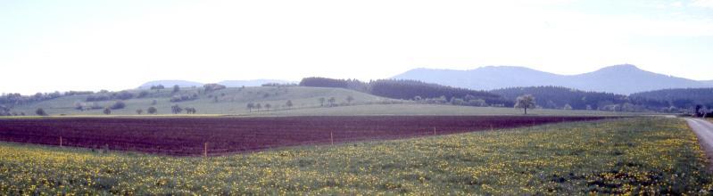 Panoramabild von blühenden Wiesen und dunklen Ackerflächen. Im Hintergrund links ein flacher grüner Hügel. Rechts ragen hinter Waldstreifen zwei bewaldete Berge auf.