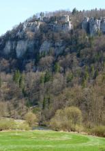 Hoch aufragende, weißlich graue Felstürme bestimmen dieses Bild. Unterhalb des Gesteins folgen bewaldete Schutthänge, ein Fluss sowie grüne Wiesen.