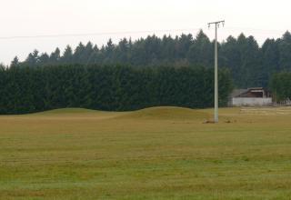 Das Bild zeigt zwei am hinteren Ende einer Grünlandfläche liegende Erdhügel, die ebenfalls mit Gras bewachsen sind. Im Hintergrund stehen Nadelwälder.
