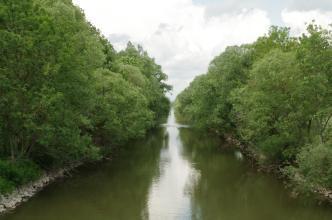 Das Bild zeigt einen vom Betrachter wegführenden, gerade verlaufenden Fluss. Beide Ufer sind am Flussrand steinig und dicht mit Bäumen bewachsen. Zum Hintergrund hin hängen die belaubten Äste beider Baumreihen weit über dem Fluss und berühren sich fast.