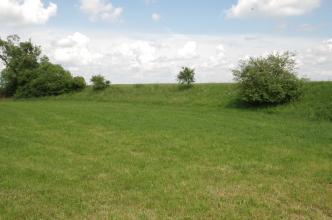 Blick auf eine grüne Wiese mit rechts angrenzendem, begrüntem Damm. Ein paar Büsche und Bäume sind auf dem Damm verteilt.