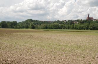 Das Bild zeigt weite braune Ackerflächen mit noch niedrigem Pflanzenwuchs. Nach einem schmalen Grünstreifen folgt ein bewaldeter langgestreckter Hügel. Zwischen den Bäumen versteckt sich eine Siedlung. Nur eine Kirche rechts am Rand ist deutlich sichtbar.