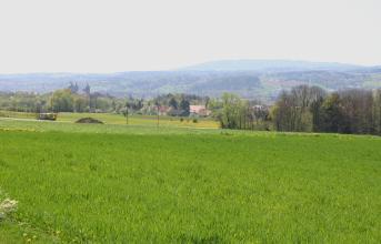 Blick über grüne Wiesen auf tieferliegende Baum- und Waldstreifen. Links sind die Türme einer Kirche zu erkennen. Im Hintergrund eine wieder ansteigende, zum Teil bewaldete Landschaft.