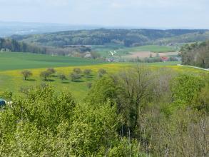 Blick von erhöhtem Standort über Wiesen und Obstbäume. Dahinter folgt eine hügelige Landschaft mit Wiesen, Äckern und bewaldeten Höhenrücken.