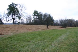 Blick auf einen braunen, nach links ansteigenden, wallartigen Bodenstreifen. Rechts schließt sich eine grüne Wiese an. Im Hintergrund stehen, zum Teil einzeln, Bäume.