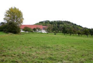 Hinter einer Wiese steht zwischen Bäumen ein Bauernhof. Im Hintergrund ist ein bewaldeter Hügel zu erkennen.