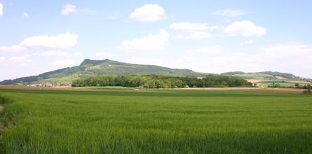 Blick über hochstehende grüne Felder, Wiesen und Äcker auf einen länglichen, bewaldeten Berg mit zwei Höckern. Die Hangzonen links und rechts des Berges sind teils bewaldet, teils in Ackerflächen unterteilt.