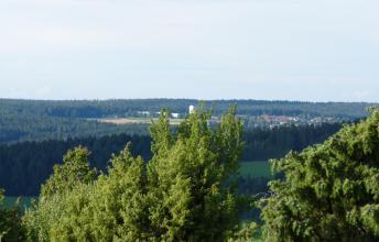 Blick über Baumspitzen auf eine bewaldete Landschaft. Im Hintergrund ist in den Wäldern eine Insel ausgeschnitten, mit Äckern und Besiedlung.