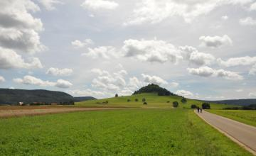 Das Bild zeigt eine flache Grün- und Ackerlandschaft mit einem grünen, auf der Kuppe bewaldeten Hügel im Hintergrund.
