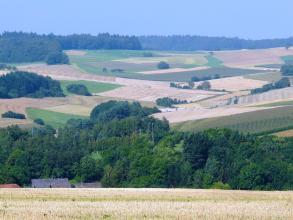 Blick über hochgelegene, stoppelige Äcker auf Waldflächen und eine hügelige, nach links und rechts ansteigende, meist landwirtschaftlich genutzte Ebene. Den Hintergrund begrenzen Waldstreifen.
