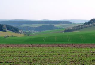 Über teilweise begrünte Äcker im Vordergrund blickt man auf weitere, teils begrünte Ackerflächen im Mittel- und Hintergrund, die zu einem Tal links hinabführen. Dazwischen liegen bewaldete Hügel und Höhenzüge.