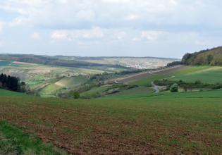 Von einem hochgelegen, begrünten Acker geht der Blick auf einen nach rechts aufsteigenden, teilweise mit Rebstöcken bepflanzen Hang. Links und im Hintergrund folgt ein Mosaik aus ebenfalls ansteigenden Äckern und Wald sowie eine im Tal liegende Ortschaft.