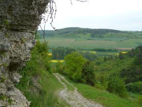 Das Bild zeigt links eine hochragende, graue Felswand, mittig einen abwärts verlaufenden Weg sowie einen nach rechts aufsteigenden, bewaldeten Gegenhang. Im Hintergrund erhebt sich ein weiterer, aus Äckern, Grünland, Steinhügeln und Wald bestehender Hang.