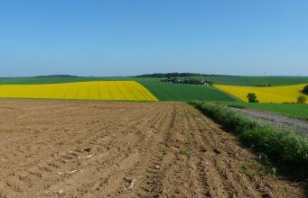 Das Bild zeigt im Vordergrund einen hoch gelegenen, rechts von einem Weg begrenzten flachen braunen Acker. Dahinter schließen sich gewellte, grün und gelb gefärbte Ackerflächen an.