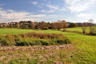Blick auf eine nach links und rechts leicht ansteigende grüne Wiese mit Heidekraut im Vordergrund. Im Hintergrund sind eine teilweise von Bäumen verdeckte Siedlung sowie ein flacher Hügel erkennbar.