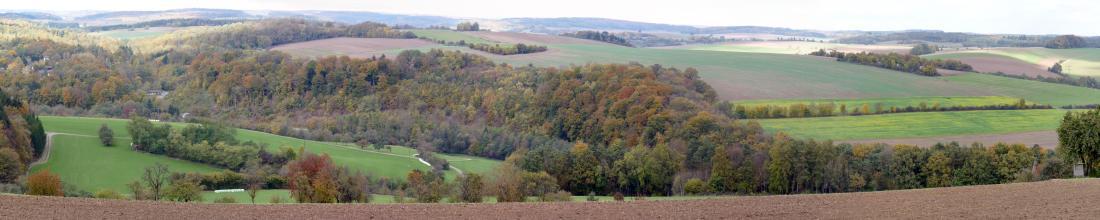 Panoramabild einer hügeligen Ackerlandschaft, die von Waldgebieten und Heckenstreifen durchsetzt ist.