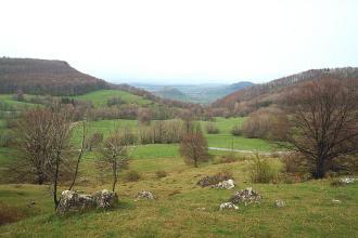 Das Bild zeigt eine wellige Grünlandschaft mit kleineren, verstreut liegenden Felsen im Vordergrund. Bäume und Hecken verteilen sich bis zum Mittelgrund, wo sich nach links und rechts ansteigende, bewaldete Hänge anschließen.