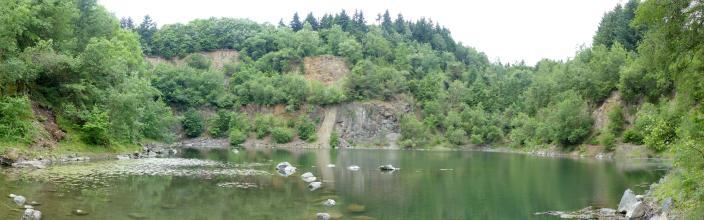 Blick auf einen stark mit Bäumen und Sträuchern zugewachsenen Steinbruch. In der Bildmitte sind noch rötlich graue Gesteinswände sichtbar. Im Vordergrund befindet sich ein kleiner See.
