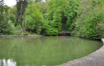 Auf dem Bild sieht man eine grüne Wasserfläche, die im Vordergrund ein in Stein gefasstes Ufer, am gegenüberliegenden Ende ein natürliches Ufer mit Böschung und Waldbestand hat. Eine kleine Brücke im Hintergrund verbindet beide Ufer.