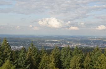 Blick aus großer Höhe über die Wipfel eines Tannenwaldes auf eine waldreiche, hügelige Landschaft mit einer größeren Stadt im Mittelgrund.