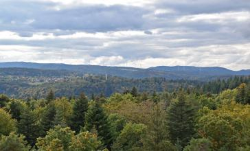 Blick aus großer Höhe über Baumwipfel auf ausgedehnte, bewaldete Bergrücken. Auf dem Bergsattel links liegt eine Ortschaft zwischen den Wäldern. Im Hintergrund sind Windräder und bewaldete Höhen zu erkennen.