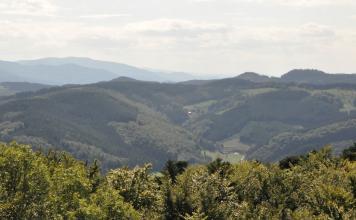 Blick über Baumwipfel auf ineinander verzahnte, bewaldete Berge. Im Hintergrund links sind weitere, entferntere Höhen erkennbar.