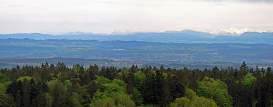 Blick von erhöhtem Standort über waldige Hügel auf einen großen See. Dahinter erheben sich bewaldete Berge sowie eine Hochbegirgskette mit verschneiten Spitzen.