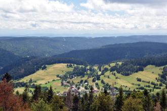 Blick von erhöhtem Standort über Baumspitzen auf eine teils bewaldete, teils baumfreie und besiedelte Hochfläche. Zum Hintergrund hin sind zahlreiche bewaldete Bergrücken aneinandergereiht.