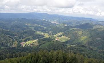 Blick aus großer Höhe auf zahlreiche bewaldete Berge, die bis zum Horizont reichen. Dazwischen, an den Hängen und in tieferen Lagen, finden sich baumlose, besiedelte Flächen.