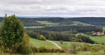 Blick über einen nach rechts abfallenden grünen Hügel auf eine ausgedehnte Waldlandschaft mit grünen Inseln. Im Hintergrund links verläuft eine Bergkette.