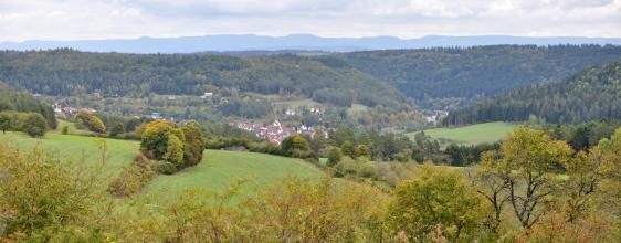 Weiter Blick über Baumspitzen auf einen gewölbten, mit trockenem Gras sowie Bäumen und Sträuchern bedeckten Hügel. Dahinter steigt ein bewaldeter Gegenhang auf. Im Tal dazwischen liegt eine Ortschaft. In der Ferne ist eine Bergkette erkennbar.