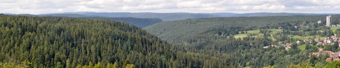 Weiter Blick über bewaldete Bergrücken, die in der Mitte einen Taleinschnitt bilden. Rechts, zum Bildrand hin, steigt eine teils bewaldete, teils besiedelte Hochfläche auf.