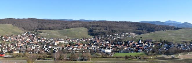 Panoramablick auf eine sich entlang von Rebbergen ausbreitende Ortschaft. Die Kuppen der Rebterrassen sind bewaldet. Dahinter sind höhere Berge erkennbar, rechts auch einer mit von Schnee bedecktem Gipfel.