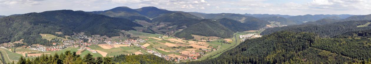 Über Baumwipfel hinweg blickt man auf ein langgezogenes Flusstal mit Wiesen, Äckern, Siedlungen und Industrieanlagen. Gesäumt wird das Tal von zahlreichen bewaldeten Bergen.