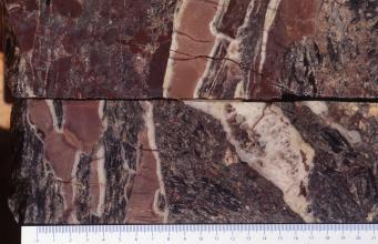 Querschnitt von zwei aufeinanderliegenden Gesteinsproben, die in Farbe und Maserung (violettgrau, rotbraun und weiß) einem Schwarzwälder Speck ähneln (Kruste, Fleisch- und Fettanteil).