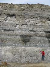 Blick auf eine hohe Steinbruchwand mit unterschiedlichen, waagrecht verlaufenden Horizonten. Rechts unten hält ein Mann mit roter Jacke und gelbem Helm einen Maßstab in die Höhe.