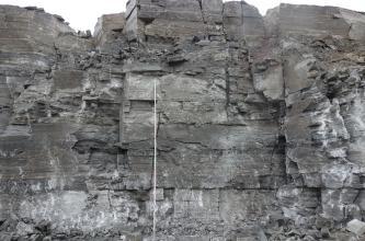 Blick auf die zerklüftete Abbauwand eines Steinbruches mit hellgrauen Stellen unten und rechts am Bildrand. Im übrigen Teil des Bildes dominiert dunkelgraues Gestein.