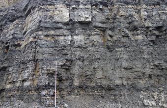 Blick auf eine mehr als 10 Meter hohe Steinbruchwand. Das graue Gestein zeigt eine Wechselfolge aus plattigen bis dünnbankigen Kalksteinen und dünnen, dunkleren Tonmergelgesteinen. Vor der Wand steht ein 5 Meter hoher Maßstab.