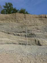 Blick auf eine hellgraue bis hellbraune Abbauwand einer Kiesgrube. Unterhalb der Bildmitte, von links nach rechts, verläuft in einem nach unten gerichteten Bogen eine glatte Schicht mit nur wenig Kies. Darunter sind Rutschungen erkennbar.