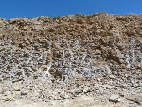 Das Bild zeigt eine Steinbruchwand aus frisch gesprengtem Plattenkalk. Die hellen Sprenggänge in dem etwas dunkleren, beigen Gestein sind deutlich zu erkennen.