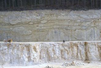Blick auf eine gestufte Steinbruchwand. Die untere Abbausohle ist weißlich bis hellbraun und senkrecht gefurcht, die obere Sohle ist bräunlich grau und zeigt sowohl waagrechte Furchen als auch größere, eingeschlossene Blöcke. Die Kuppe ist dicht bewaldet.