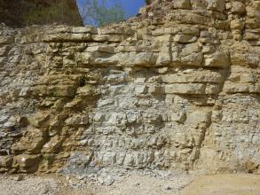 Man sieht eine Abbauwand aus hellgelbem bis grau-bräunlichem, in Bänken anstehendem Gestein in einem Steinbruch.