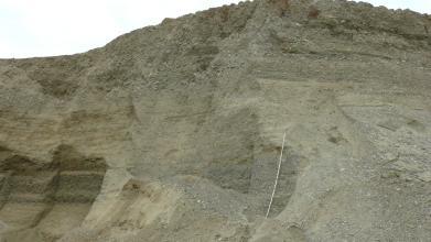 Blick auf den oberen, leicht gerundeten Teil einer graubraunen Abbauwand von Grobkiesen und Grobsanden.