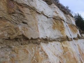 Blick von der Seite auf eine Wand aus hellem, gebanktem Kalkstein mit dünnen, etwas dunkleren Mergelzwischenlagen. An die Wand ist ein Maßstab gelehnt.