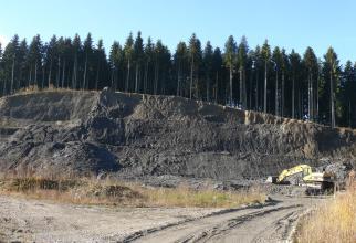 Blick auf eine nach links ansteigende, mehrstufige Tongrube. Das Material ist schwarzgrau, die Kuppe von hohen Nadelbäumen bewachsen. Die Sohle im Vordergrund ist teilweise bewachsen und zeigt rechts Fahrspuren.