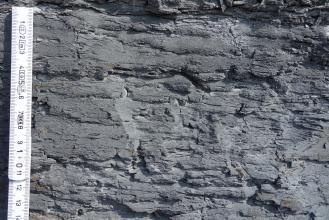 Nahaufnahme eines dunkelgrauen bis schwarzen Gesteins mit unregelmäßer, unebener Oberfläche. Am linken Bildrand befindet sich ein Maßstab, der Bildausschnitt ist etwa 15 cm hoch.