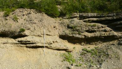 Das Bild zeigt eine hellbraune, teils bewachsene und abgerutschte Gesteinswand mit waagrechten Furchen und Nischen.
