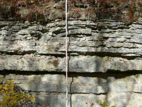 Blick auf eine Abbauwand eines stillgelegten Steinbruchs. Das anstehende Gestein ist grau und liegt im oberen Bereich in dünnen und im unteren Bereich in dickeren Bänken vor. Vor dem Aufschluss befindet sich ein Maßstab.